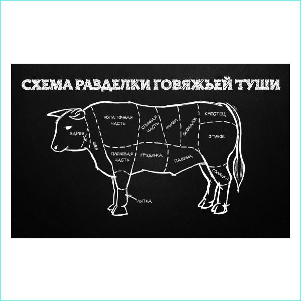 Схема разделки говяжьей туши, мясо, корова, говядина